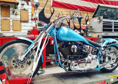 harley davidson custom softail shire