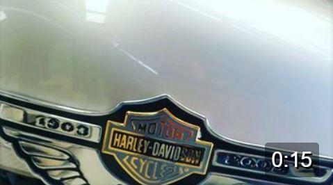 Harley Anniversary Bikes Jul 15 2017